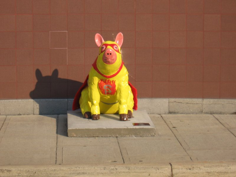 Super Pig in Lexington Sponsored by Speedy's BBQ Inc.
